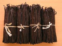 Vanilla Bean Products