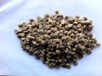 Green Arabica Coffee Bean Grade B