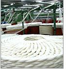TC & CVC Optical White Yarn