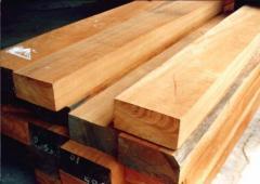Indonesian Soft Wood