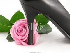 Plastic Shoe Heels