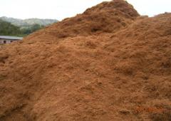 Cocopeat Product
