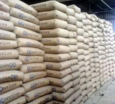 Portland Cement Type 1