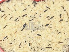 Rice Broken Kernels 5%