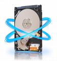 Harddisk Seagate 500 GB SATA II (RESMI)