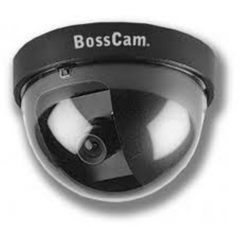 Dome Camera Boss Cam