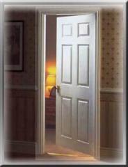 Engineering Doors
