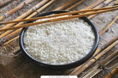 Organic and Inorganic Rice