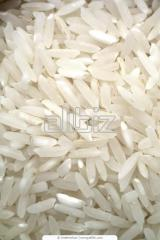 Organic Glue Rice