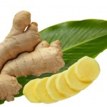 Indonesia Ginger
