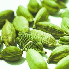 Cardamom Spices