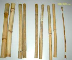 Raw Rattan Wood
