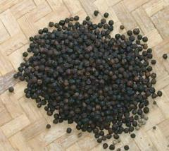 Black Pepper Spice
