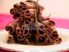 Cinnamon Spices