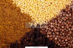 Indonesian Nutmeg & Mace