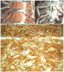 Blue Crab Products