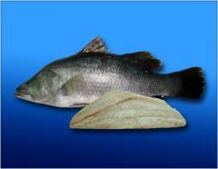 Baramundi Fish Products