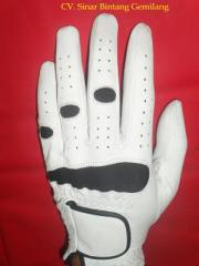 Limited Edition Golf Gloves