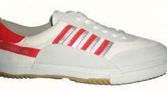 Mogul Badminton Footwear