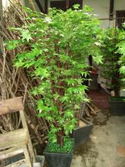 Plastic Trees Topiary & Bonsai Maple