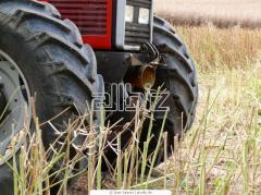 Plow ILS 5925 C