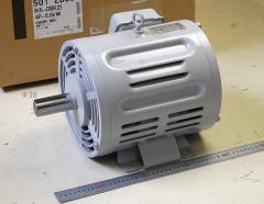 Toshiba Induction Motor