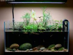 GEX Aquarium - Compact 45cm