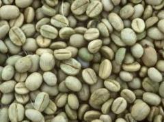 Coffee Specialty Kintamani-Bali