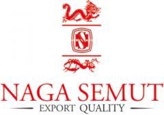 Naga Semut