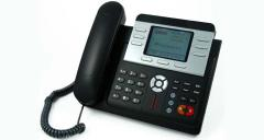 IP Phone ZP502