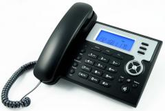 IP Phone ZP302