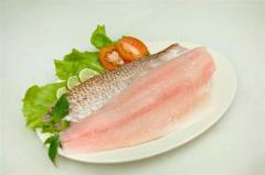 Frozen Crimson Snapper Fillet