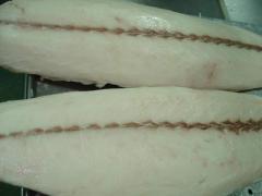 Frozen Oilfish Fillet