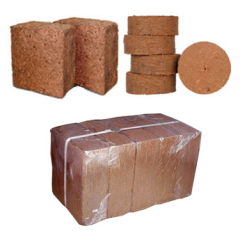 Coconut Peat Products