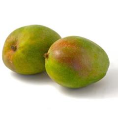 Mango Fruit Products