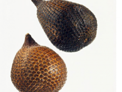 Snake Fruit Products