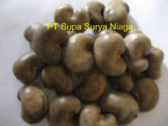 Cashew Nuts Product