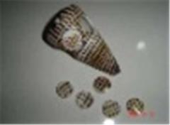 Shell Button Spot Cone