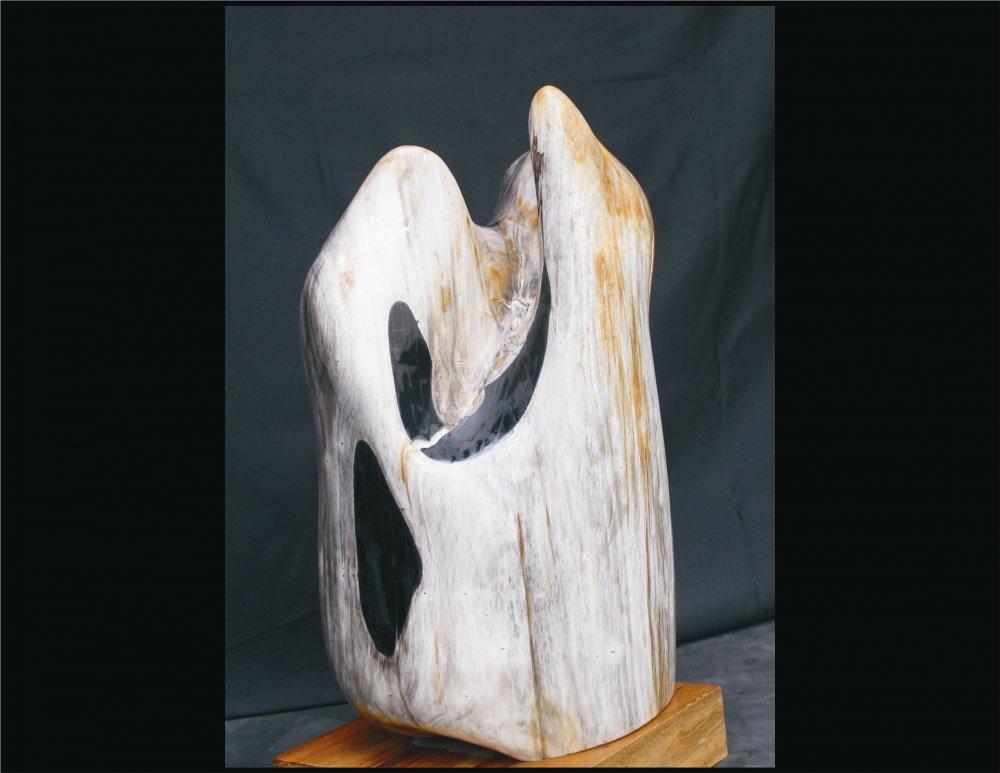 petrified_wood_sculpture