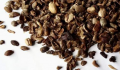Arabica Mandheling Coffee