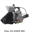 Rotax 125 Junior Max Kart Engine