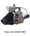 Rotax 125 Mini Max Kart Engine