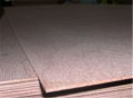 Plywood structural panel