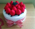 Shortcake Flannel Strawberry