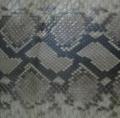 Skin python