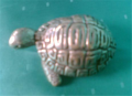 Tortoise Bronze