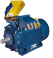 Induction Motor Marelli