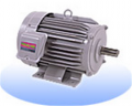 Induction Motor Mitsubishi