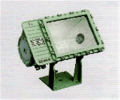 Floodlight BFD 92