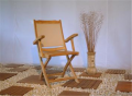 Folding Arm Chair Thalys